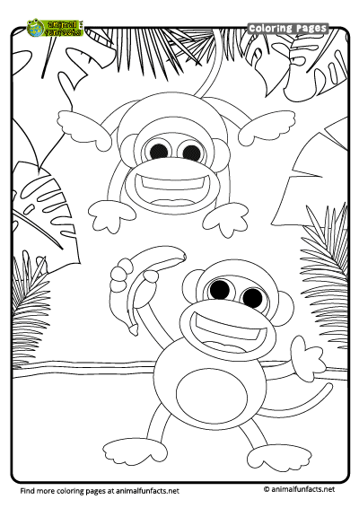 Monkey Coloring Page – Coloring Pages   566x400