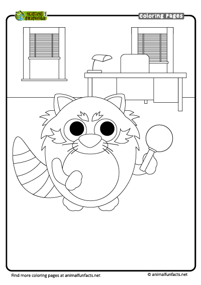 coloring page red panda animal encyclopedia for kids