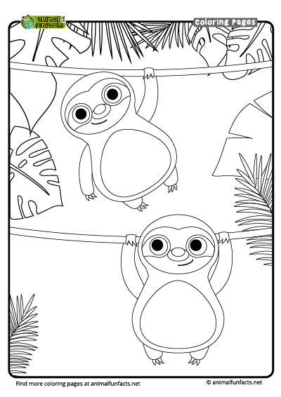 Coloring Page Sloth
