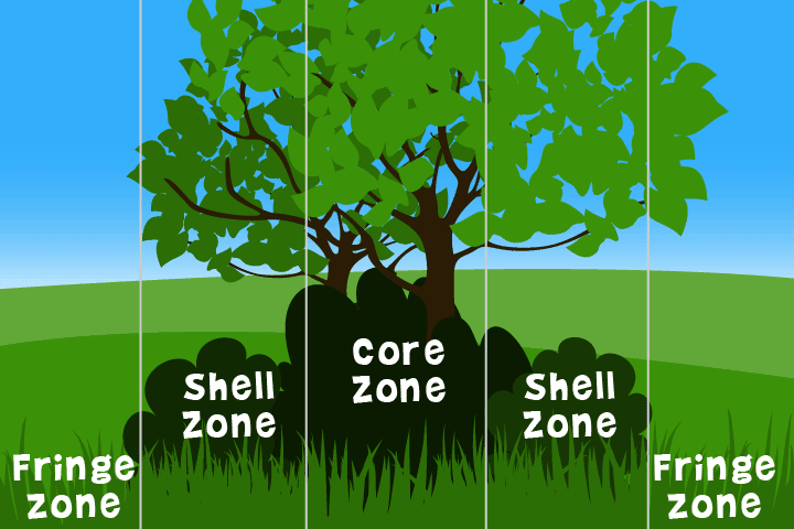 Zones in a hedge